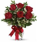 For that classy lady in your life, Send the classic 1/2 dozen roses arranged in a glass vase for only $55