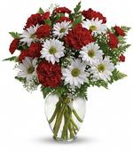 A special show of kindness, on Valentine's Day or any day of the year! This eye-catching arrangement of red carnations, white daisies and delicate baby's breath will surprise and delight your special someone - and remain a treasured memory for years to come. Flowers may vary.
